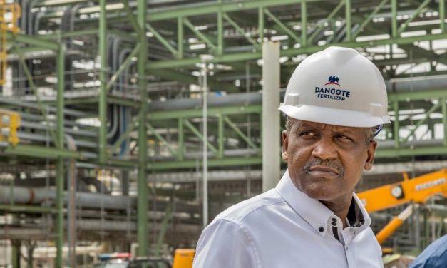 Africa's Richest Man Makes a $17 Billion Bid for Immortality